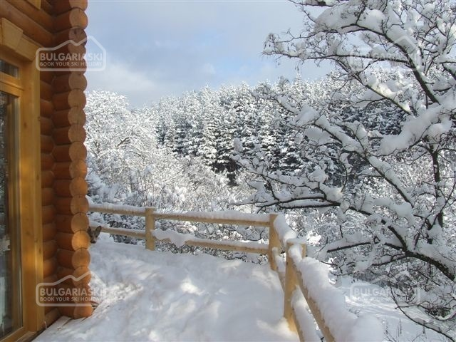 The Green Pine Chalet3