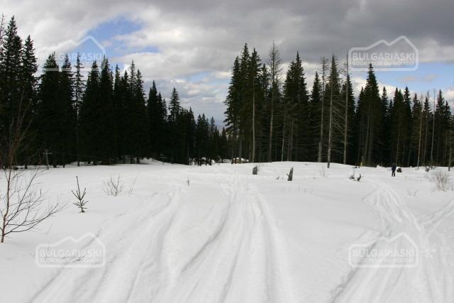 Kom ski resort4